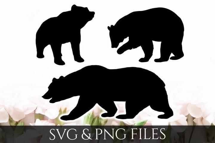 Bear SVG & PNG File