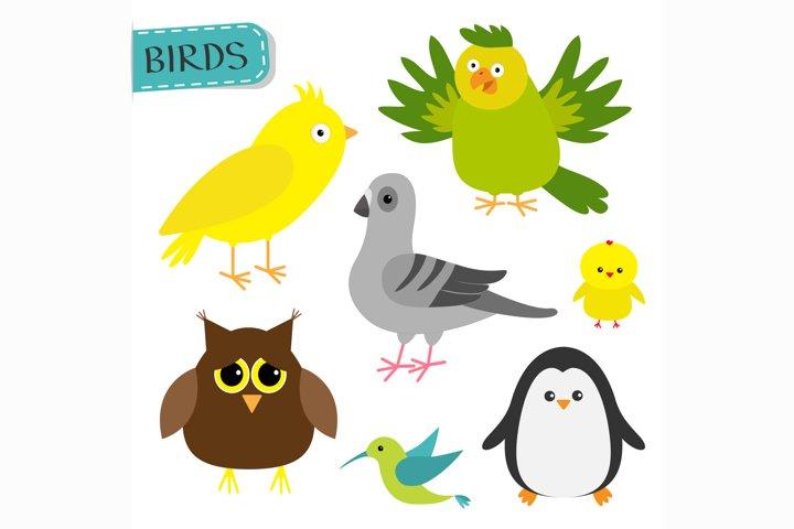 Cute cartoon bird set. Vector illustration
