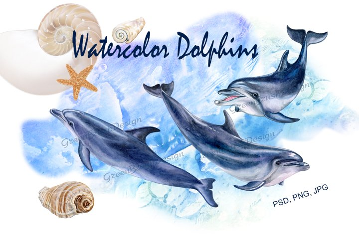 Watercolor dolphins. Clipart. Illustrations. Templates