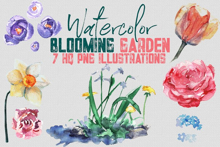 Watercolor Set of Illustrations Blooming Garden - 7 PNGs