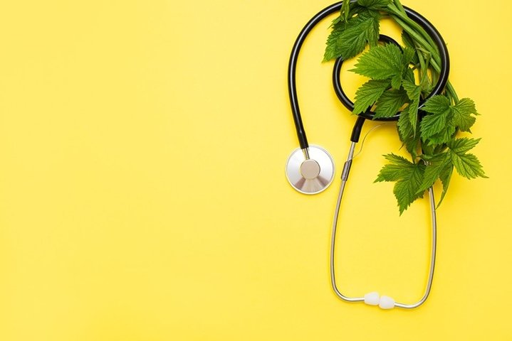 natural medicine with stethoscope and green leaves on yellow