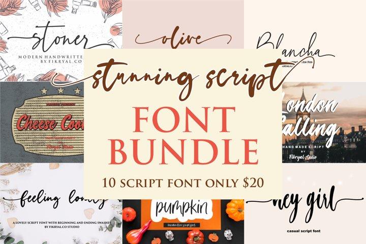 stunning script font bundle