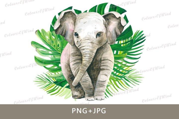 Watercolor baby elephant sublimation design