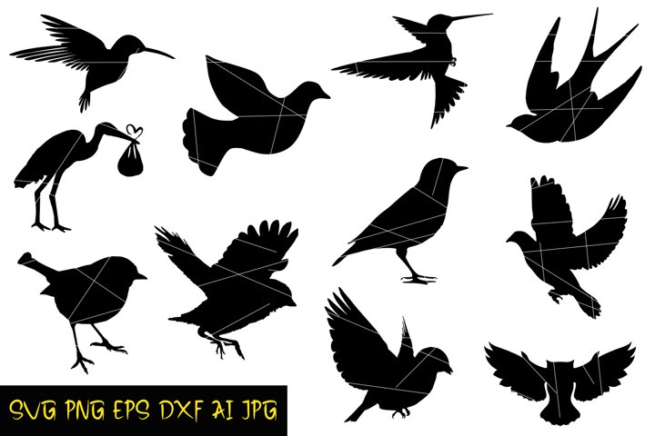 Birds Digital Silhouette, Birds SVG, Silhouette PNG, EPS