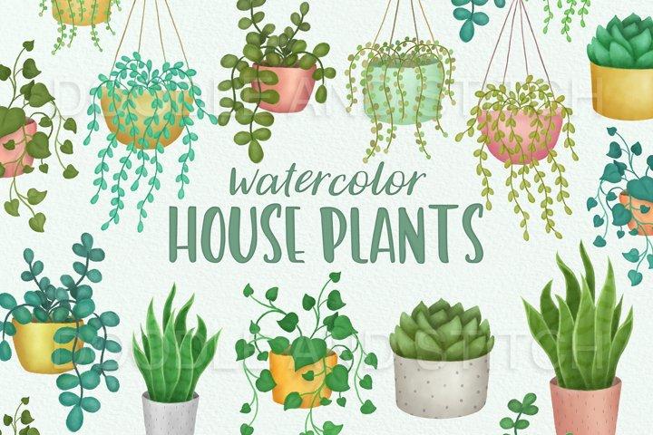Watercolor House Plants Illustrations