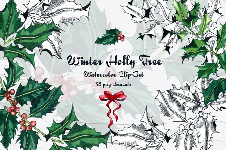 Holly Tree Watercolor Clip Art