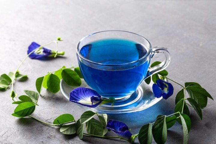 Blue Butterfly Pea Tea in a glass cup with flowers on grey.