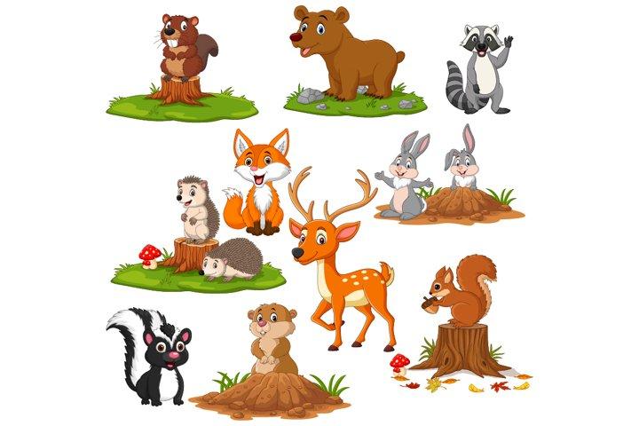 Set of Cute Cartoon Woodland Animals