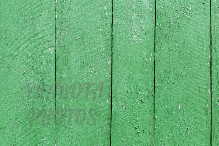 Wooden texture background green colored