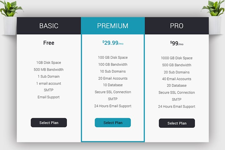 Web Pricing Table