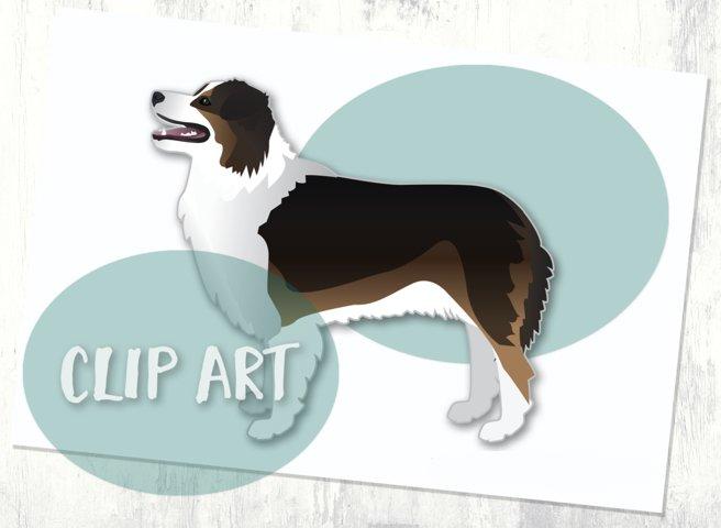 Australian Shepherd Dog Clip Art