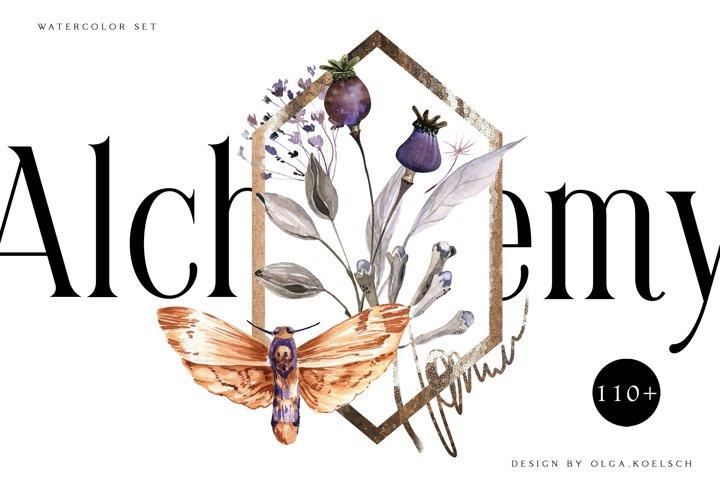 Watercolor dried flower bouquet clipart Boho floral elements