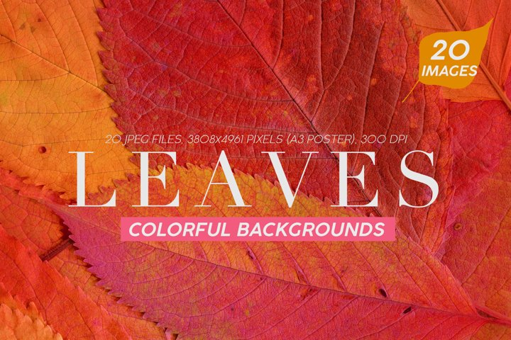 20 Colorful Leaves Backgrounds