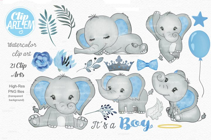 Blue Gray Boy Elephant watercolor Bundle 21 PNGs files