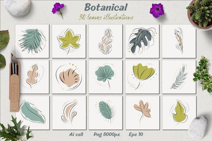 Botanical - leaves illustration and more
