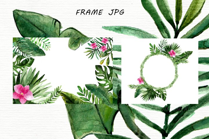 Watercolor clipart with tropical leaves. example 6