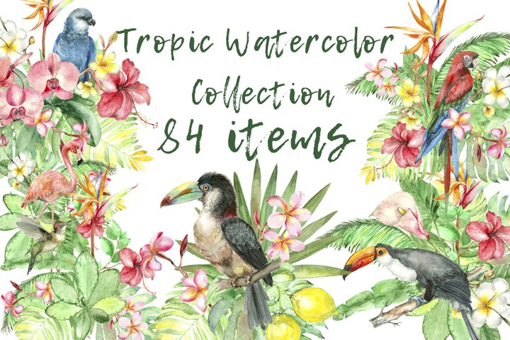 Tropic Watercolor Collection