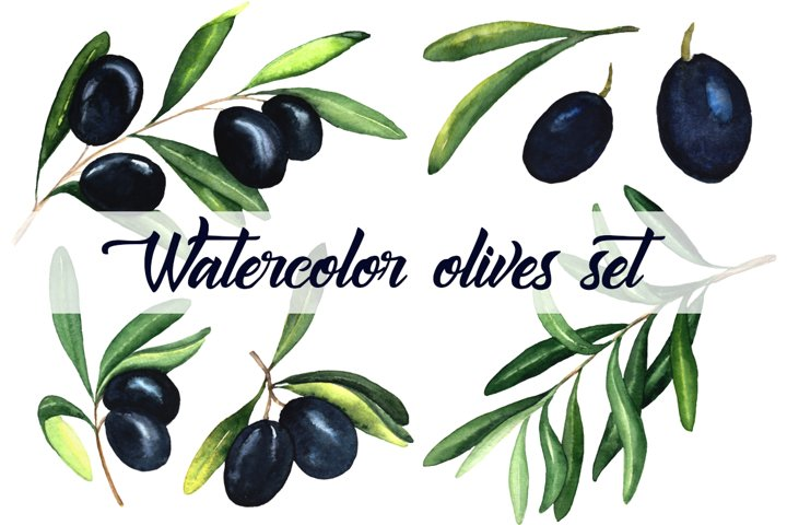 Watercolor olives set