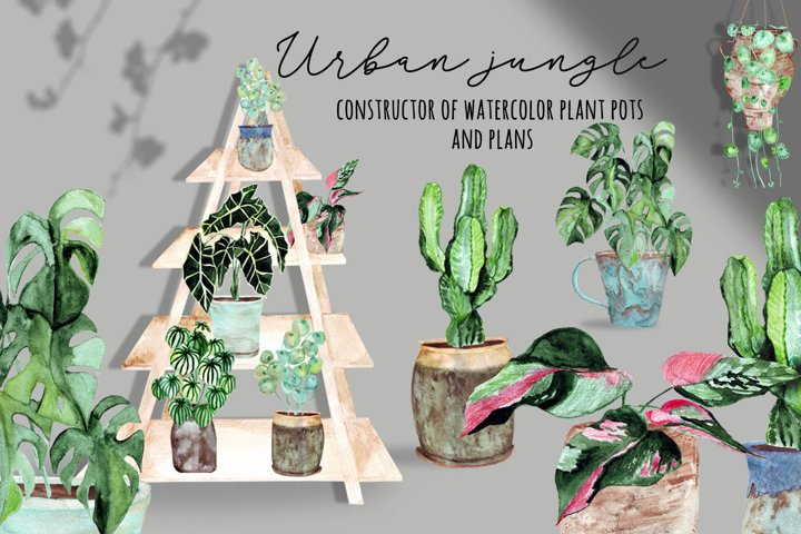 Urban jungle. Watercolor isolated objects as plants and pots