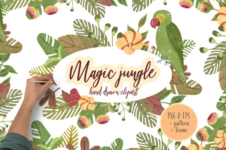 Magic Jungle Clipart Illustration Hand Drawn Summer Set Tropics