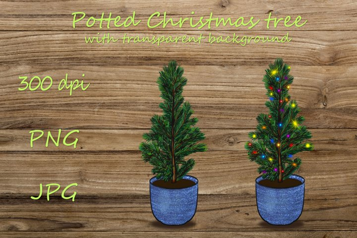 Potted Christmas Tree PNG with lights for sublimation.