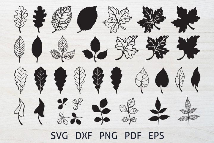Fall Leaves, Cutting SVG Bundle, Autumn Leaves Clipart