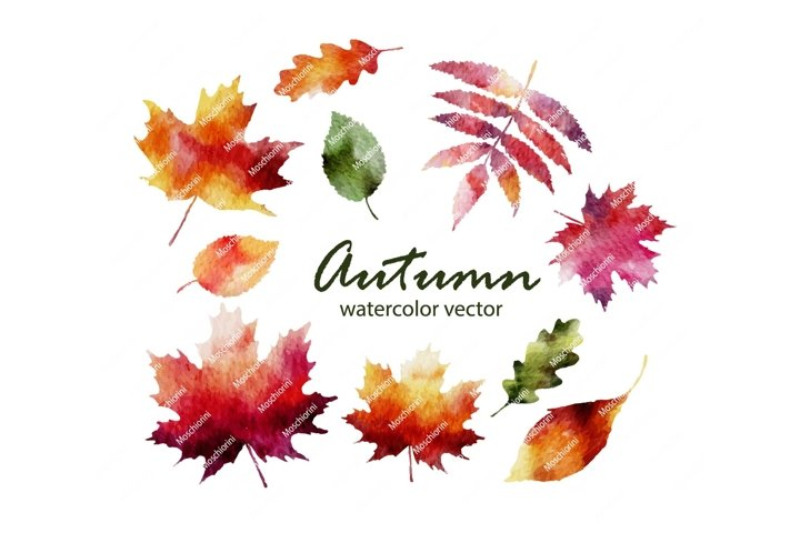 Set Eps of illustrations of the fall watercolorleaves