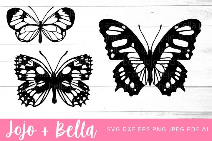 Butterfly Svg Bundle | Butterfly SVG
