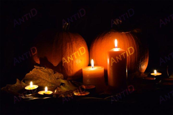 Festive composition for Halloween.