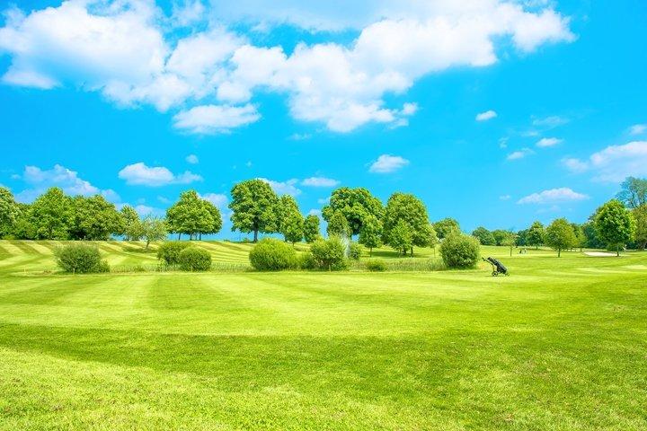 Golf course Green field blue sky Landscape