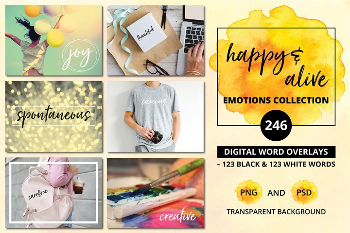 Social Media Overlays - 246 Happy & Alive Emotions Words
