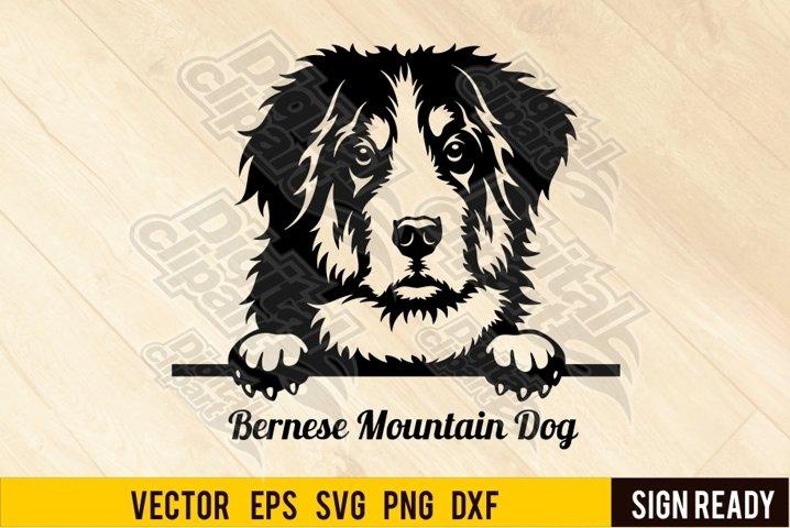 Peeking Bernese Mountain Dog DOG SVG Clipart Vector Cut