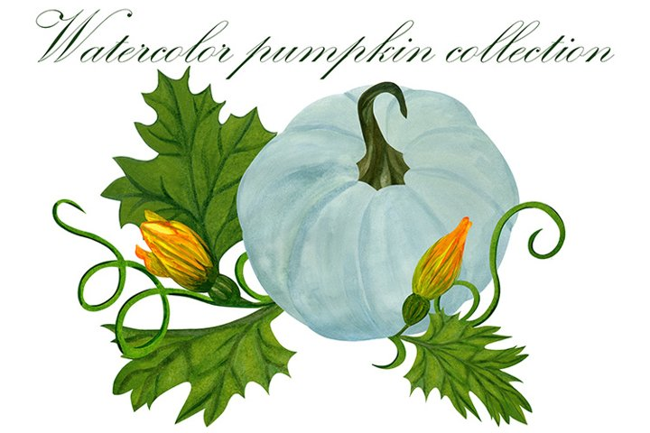 Hand painted watercolor pumpkin collection