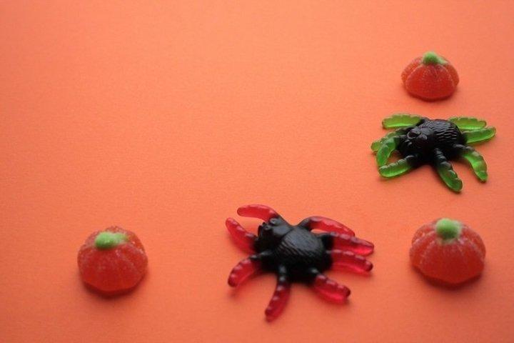 Spiders, pumpkins - sweet Halloween background - 2