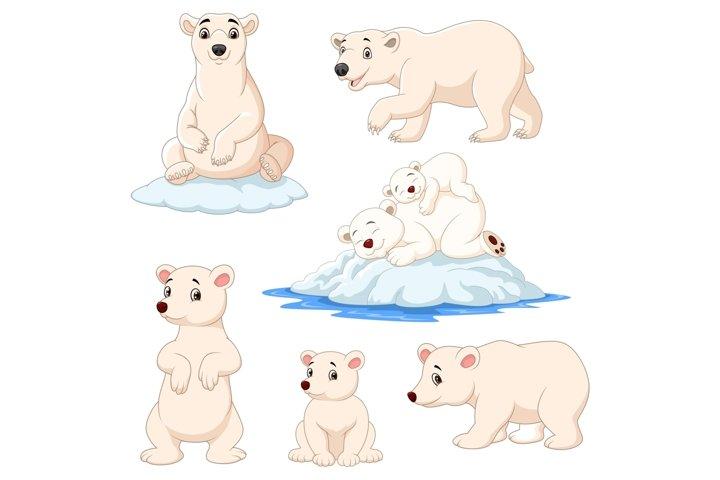 Cartoon Polar Bear Bundles