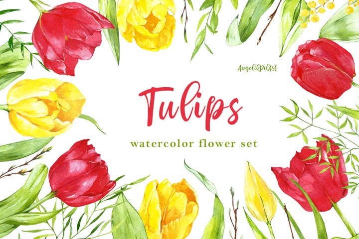 Watercolor hand- painted clipart. red ,yellow tulips,
