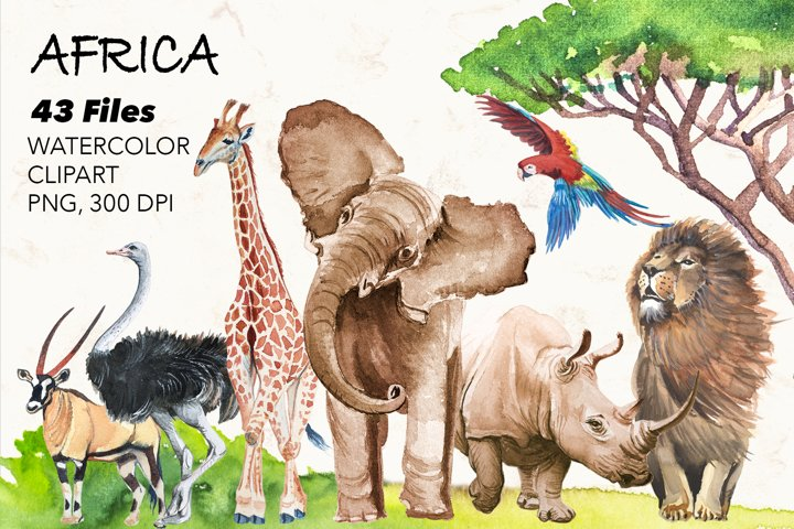 African animals and birds watercolor.