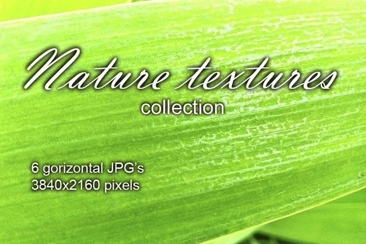 Nature texture photo backgrounds
