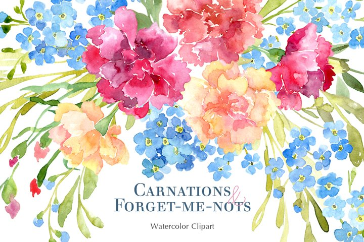 Watercolor Carnations &Forget Me Not Flowers