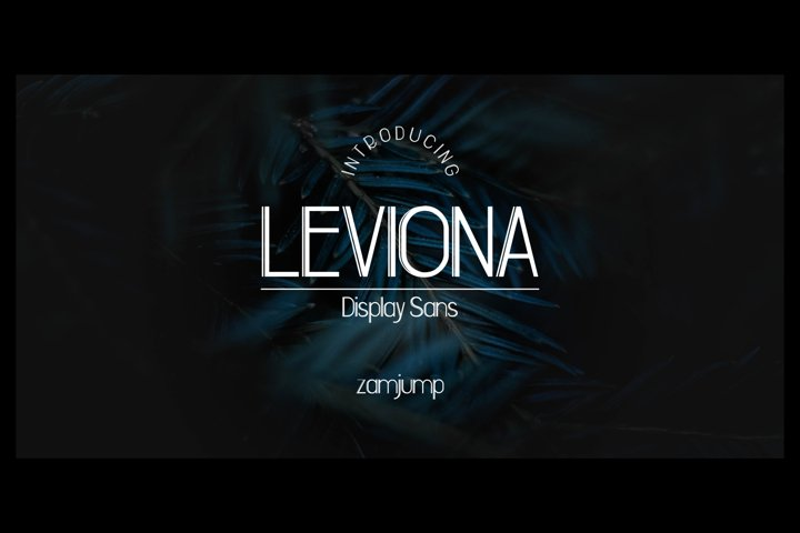 LEVIONA DISPLAY SANS