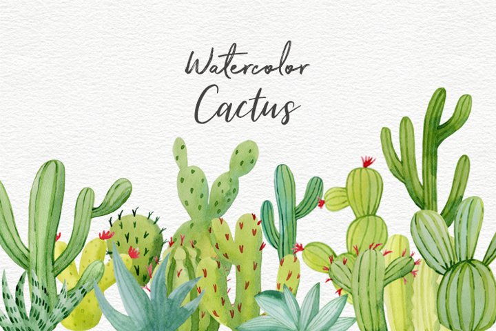 Cactus watercolor clipart collection