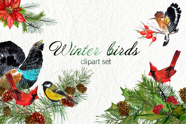 Watercolor winter birds
