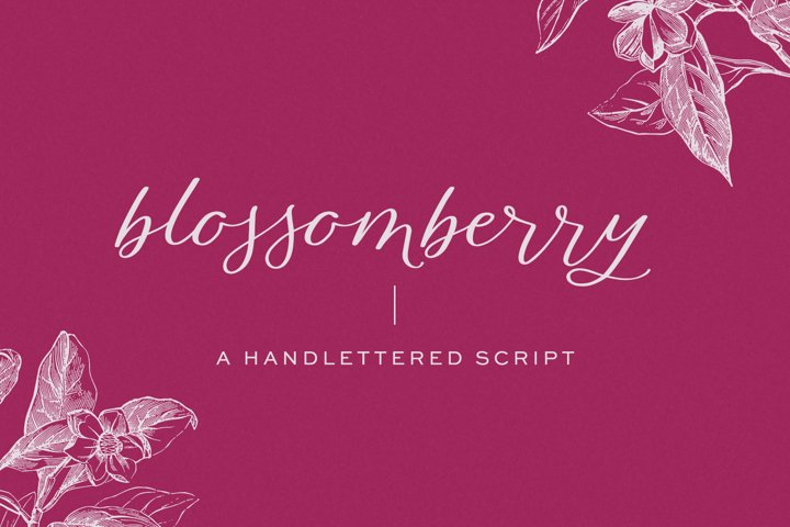 Blossomberry Script Font