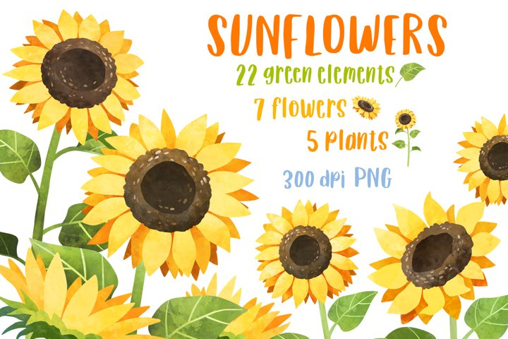 Sunflower clipart Watercolor sunflowers PNG Flower clip art