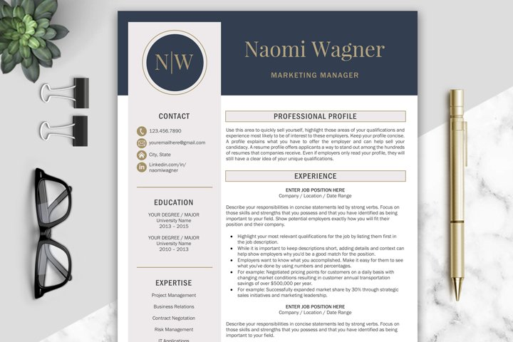 Resume Template / CV Templates
