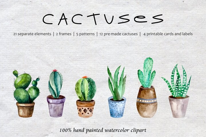 Hand Drawn Watercolor Cactuses and Pots Clipart