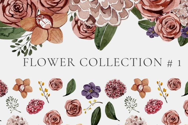 floral collection #1 PNG
