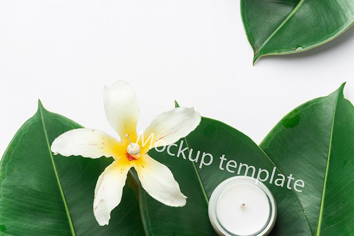 Wellness spa mockup template green leaves flower candle