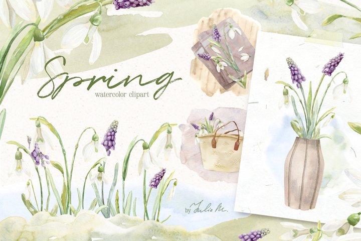 Spring Snowdrop and Muscari Watercolor Clip Art