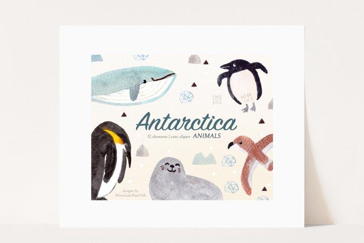 Watercolor ANTARCTICA Animals Clipart, Penguin, Seal, Whale